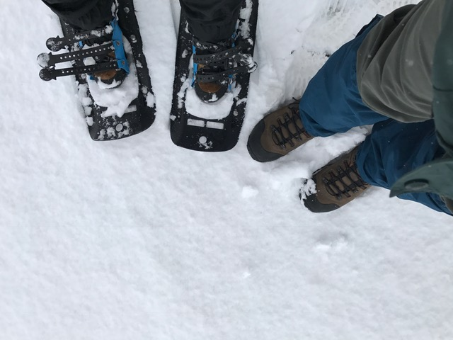 snowshoeing-to-work
