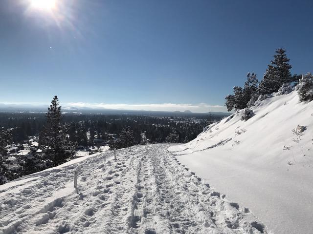 snowshoeingdown